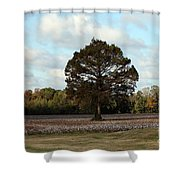 Tree No Fog Shower Curtain