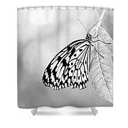 Tree Nymph - Light Shower Curtain