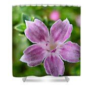 Tree Of A Thousand Stars 2 Shower Curtain