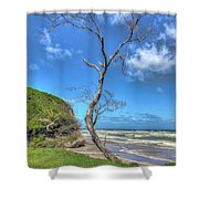 Tree Of Clouds Shower Curtain