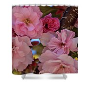 Tree Of Flowers Shower Curtain