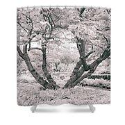 Tree Of Life II Shower Curtain