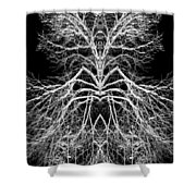 Tree Of Nature Evolving Symmetry Pattern Shower Curtain