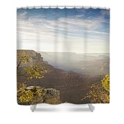 Tree Of Solitude Shower Curtain