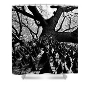 Tree Of Thorns B Shower Curtain