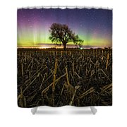 Tree Of Wonder Shower Curtain