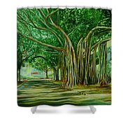 Tree Old Guy Shower Curtain