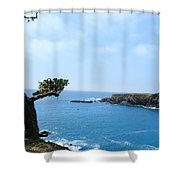 Tree On A Coastline Shower Curtain
