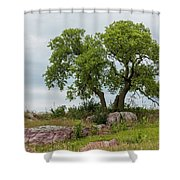 Tree On A Hill 2 Shower Curtain