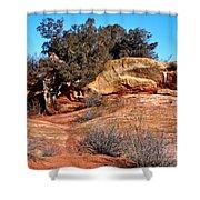 Tree On Titan Road Shower Curtain