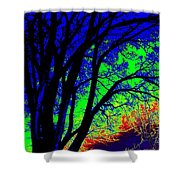 Tree One Shower Curtain