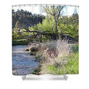 Tree Over The River Shower Curtain