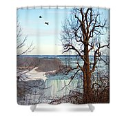 Tree Overlooking The Falls Shower Curtain