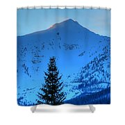 Tree Pano Shower Curtain
