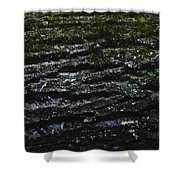 Tree Patterns Shower Curtain