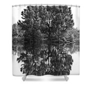 Tree Reflection In Black And White Shower Curtain