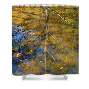 Tree Reflections Shower Curtain