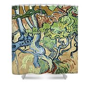 Tree-roots Shower Curtain