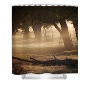 Tree Row In Morning Fog Shower Curtain