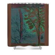 Tree Shadows At Midnight Shower Curtain