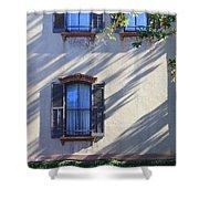 Tree Shadows On Savannah House Shower Curtain