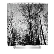 Tree Silhouette II Bw Shower Curtain