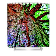 Tree Skin Shower Curtain
