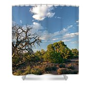 Tree Sky Utah Shower Curtain