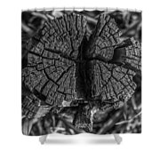 Tree Stump Black And White Shower Curtain
