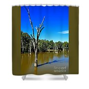 Tree Stumps In Beauty Shower Curtain