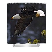 Tree Top Flight-signed Shower Curtain