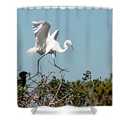 Tree Top Tip Toe Shower Curtain