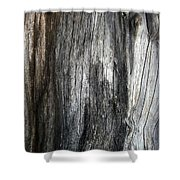 Tree Trunk Abstract Detail Shower Curtain