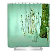 Tree Trunk In Snow Shower Curtain