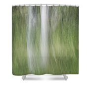 Tree Trunk Motion Shower Curtain