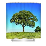 Tree Two One... Shower Curtain
