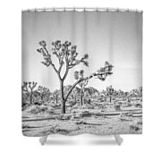 Tree Valley Shower Curtain