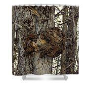 Tree Wart Shower Curtain