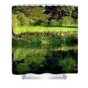 Tree With Lily Reflections Shower Curtain