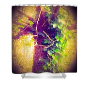 Tree With Vine Shower Curtain