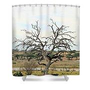 Tree009 Shower Curtain
