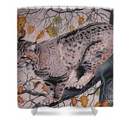Treed Shower Curtain by John Huntsman