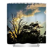 Treeline Silhouette Shower Curtain