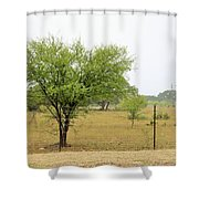 Trees 011 Shower Curtain