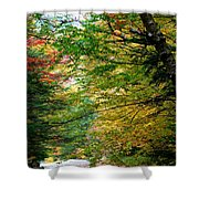 Trees Along The Flumes Trail Shower Curtain