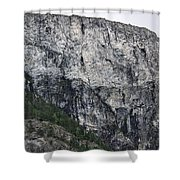 Trees And Flat Peak Shower Curtain