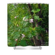 Trees And Hibiscus Bush Merge Shower Curtain