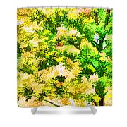 Trees And Leaves 1 Shower Curtain