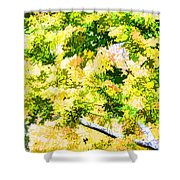 Trees And Leaves 2 Shower Curtain
