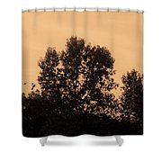 Trees And Geese In Sepia Tone Shower Curtain
